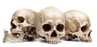 canvas print picture - three skull isolated