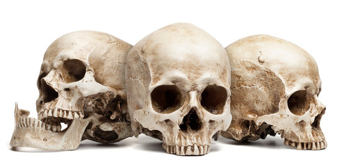 three skull isolated