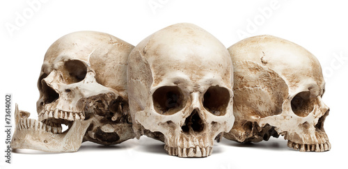 canvas print picture three skull isolated
