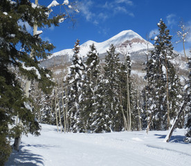 Nordic skiing and Engineer mountain