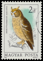 Stamp shows image of a Long-eared Owl