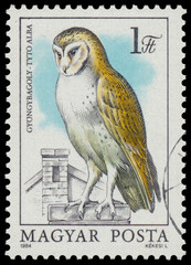 Stamp shows image of a Barn Owl
