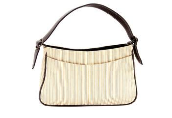 womens designer handbag on a white background.