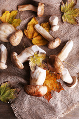 Wild mushrooms and autumn leaves on sacking background
