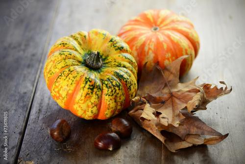 canvas print picture Herbst Dekoration