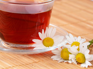 Herbal teas in cup with chamomile
