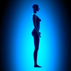 Full Female Body - Side View - Blue concept