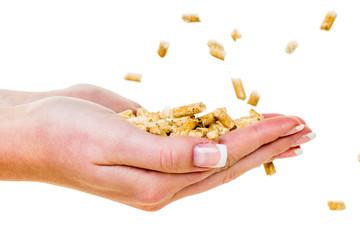 Hand mit Pellets als alternatie Energie