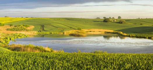 wiosenny staw otoczony polami uprawnymi