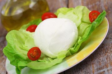 Mozzarella cheese on green lettuce