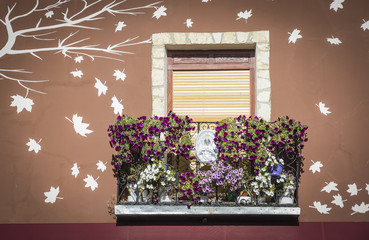 window with a balcony and flowers in pots