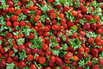 Seamless texture of juicy strawberries