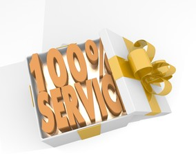 christmas gift box with service icon