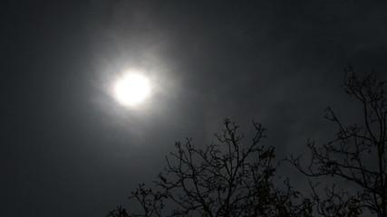 Supermoon Full Moon Timelapse