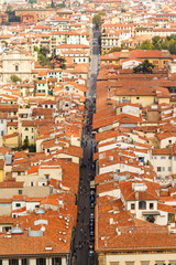 Cityscape from  height, roofs of red tiles