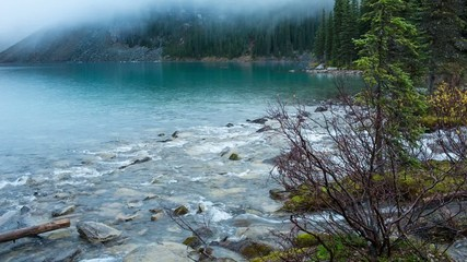Moraine lake inlet in Banff National Park, Canada