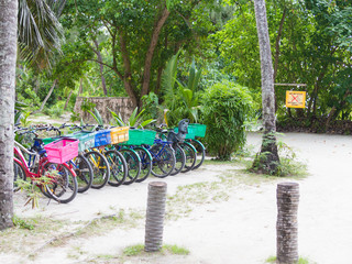 bicycle parking in a tropical park
