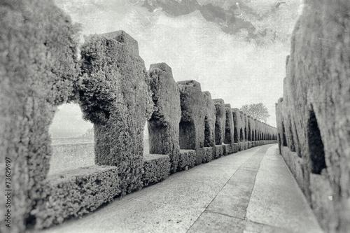 Jardines del Generalife retro