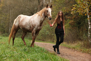 Young girl working with horse, natural horsemanship