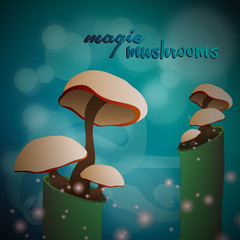 Magic mushrooms at the forest