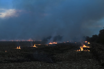 Burning fields with smoke