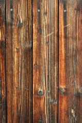 Altes Holz - Lärche