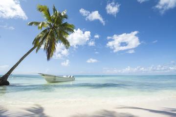 Idealic Caribbean coastline with boat