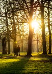 herbstlicher Spaziergang im Sonnenschein