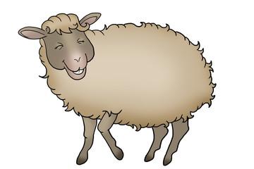 Fluffy smiling sheep