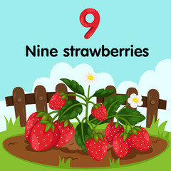 Illustrator of number nine strawberries