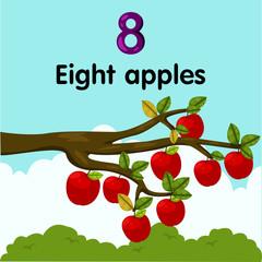 Illustrator of number eight apples