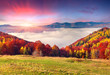 Colorful autumn morning in the Carpathian mountains.