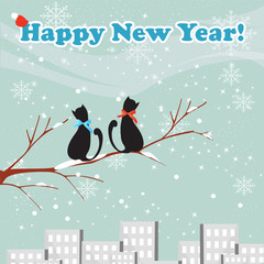 cats new year