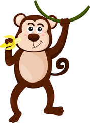 Illustrator of monkey