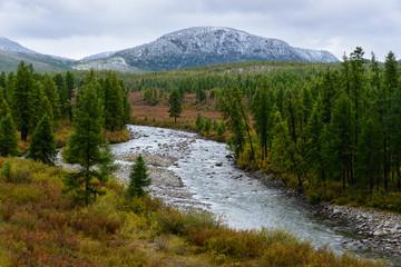 Заснеженная гора и река среди леса