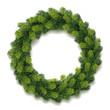 Detailed Christmas Wreath - 73655221