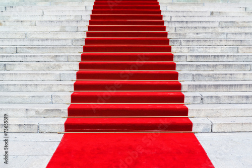 Red Carpet - 73655819