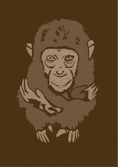 Little monkey vintage