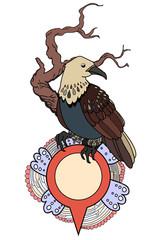decorative bird with pointer