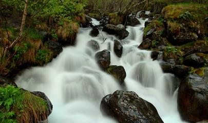 Mountain stream. Pyrenees.