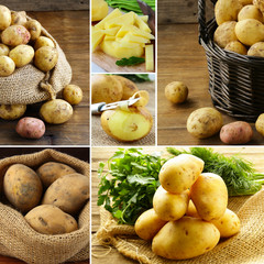 collage of fresh organic potatoes in bags and baskets
