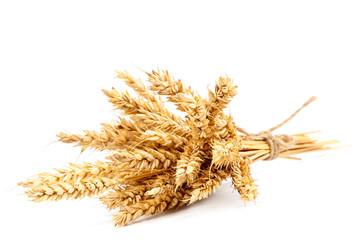 Sheaf of wheat ears on white background.