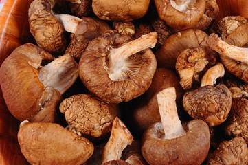 Raw Shiitake mushrooms © Arena Photo UK