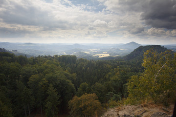 Jetrichovice