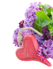 Lilac flowers with heart