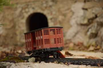 Ferrocarril y túnel
