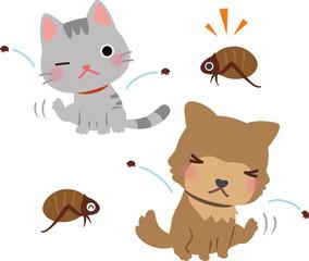 ノミに咬まれ体を掻く猫と犬