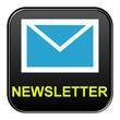 Schwarzer Button: Newsletter blau gelb