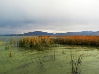 Eau reflets verts, Lac Titicaca