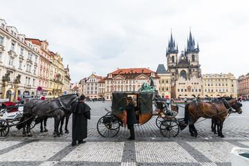 チェコ プラハ 観光馬車 Prague Czech